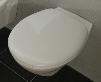 wc sitz f r cetus 48 soft close kollektion cetus. Black Bedroom Furniture Sets. Home Design Ideas